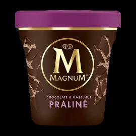 Magnum Praline 440ml